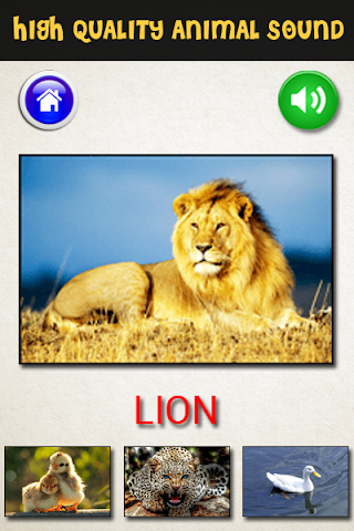 android Tiere Ton-Kids Fun Screenshot 2