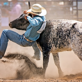 Grabbing the Bull by the Horns by Bob Grandpre - Sports & Fitness Rodeo/Bull Riding ( cowboy, dust, rodeo, river region, steer wrangling )