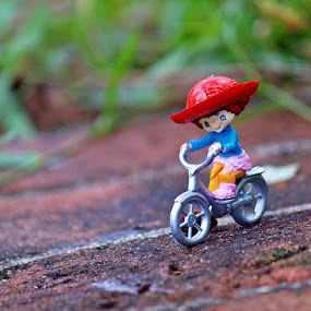 Fun Bike by Asirah Abrah - Artistic Objects Other Objects ( creation, creative, green, art, fun, object, create, red, bike, toy, blue, fresh, biker, artistic )