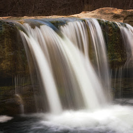 Hill Country Falls by Michelle Newport - Nature Up Close Water