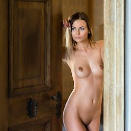 Another Door by Alex Tsarfin - Nudes & Boudoir Artistic Nude ( look, model, nude, art, door, beauty, portrait, eyes, grace, pose, blonde, female, naked, woman, light, hair )