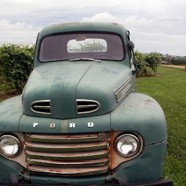 Vernon Vineyards, Viroqua, Wisconsin USA by Jo Brockberg - Artistic Objects Antiques ( car, wisconsin, old, metal, grass, green, cloudy, rusty, ford, close up, antique, rural )