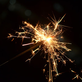 by Sivasriganeshwaran Siva - Abstract Fire & Fireworks (  )