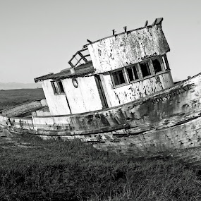Shipwreck by Megan Richardson - Artistic Objects Antiques ( water, black and white, ship, sea, ocean, boat )