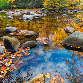 The Sky Reflection by Carol Ward - Landscapes Waterscapes ( tn, fall colors, autumn, great smoky mountains national park, trees, leaves, rocks, reflectoins, smoky mountains )