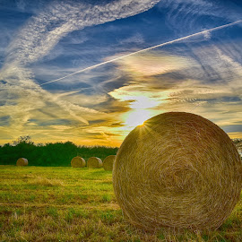Painted Sky & Hay Bales by Marco Bertamé - Landscapes Prairies, Meadows & Fields ( clouds, sky, painted, condesation trail, blue, sunset, white, yellow, hay bale, sun )