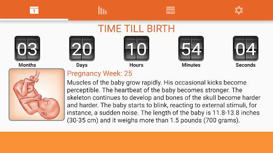 Free WomanLog Pregnancy Calendar APK for Windows 8