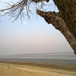 Seascape by Soumitra Maity - Landscapes Beaches ( smita, india, shila, chandipur, odisha )