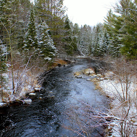 Winter on the Tyler Forks, Iron County, WI by Robert C. Walker - Landscapes Forests ( water, winter, snow, trees, forest, woods, river )