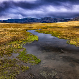 The Stream by Carol Ward - Landscapes Mountains & Hills ( clouds, hills, albuquerque nm, mountains, stream, landscape )