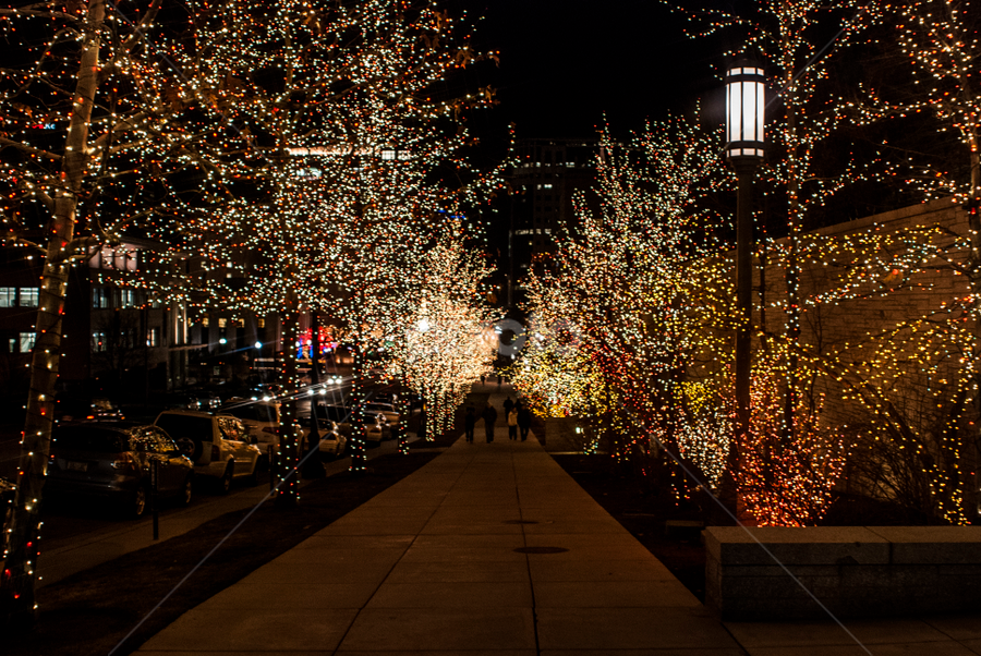 Street in lights by Kyley Hansen - Public Holidays Christmas ( lights, winter, cold, snow, christmas )