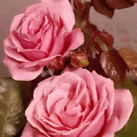 Rose Duet by Nancy Bowen - Digital Art Things ( two, painted, roses, pink )