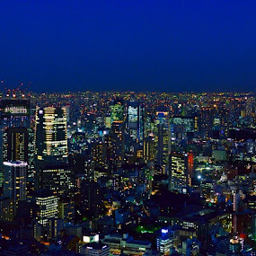 Tokyo Skyline by Kamal Kamaludin - Buildings & Architecture Public & Historical ( tokyo skyline japan city twilight urban night asia cityscape modern asian dusk tower metropolis skyscraper japanese view downtown architecture light building sunset sky travel metropolitan business street illuminated landmark town )