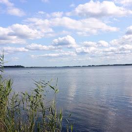 LOVELY HAMMARSJÖN by Zoritza Zozo Wejnfalk - Nature Up Close Water ( water, hamamrsjön, lake, zoritza, wejnfalk )