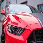 Mustang Driving Simulator 10