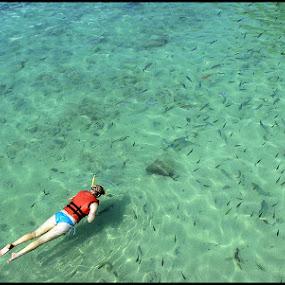 Snorkling at Pulau Payar, Kedah, Malaysia by Asrul CikguOwn - Public Holidays Other