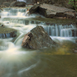 MEANDERING by Dana Johnson - Landscapes Waterscapes ( stream, waterscape, cascade, creek, landscape, river )