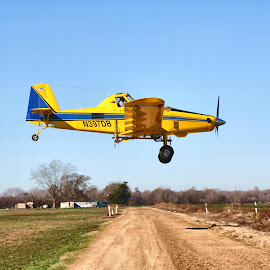 Flying Low by Owen Rockett - Transportation Airplanes ( crop dusting, ag pilot, flying low, ag aviation, agricultural aviation )