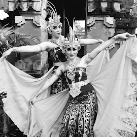 Fly by Shane Cassidy - People Musicians & Entertainers ( balinese, bali, ubud, indonesia, balinese dance, ceremony, dance, culture )