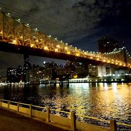 Ed Koch/Queensboro/59th St Bridge  by Chris Gray - Buildings & Architecture Bridges & Suspended Structures ( water, queens, nighttime, bridge, glow )