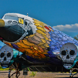 Boneyard Art by Tom Anderson - Artistic Objects Technology Objects ( tuscon, davis monthan afb, arizona, pima air and space museum,  )