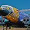 Boneyard Project, Douglas C-47 (7)2.jpg