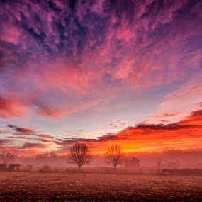 Foggy Sunrise by RomanDA Photography - Landscapes Sunsets & Sunrises ( clouds, sky, fog, @romandaphoto, sunrise, morning )