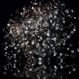 Patriotic Fireworks by Amanda Lehning - Abstract Fire & Fireworks ( reflection, america, nighttime, fireworks, celebration )