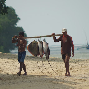Fishermen and catch of the day by Indra Fardhani - People Professional People ( traditional, fishing, fisherman,  )