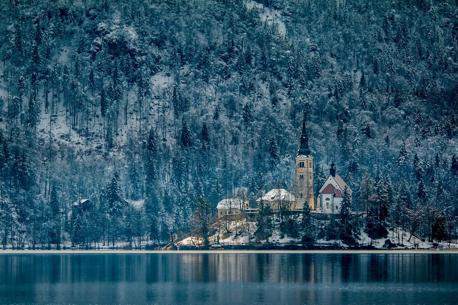 by Mario Horvat - City,  Street & Park  Historic Districts ( water, sneg, touristic, winter, slovenija, church, lake, travel, jezero, island )