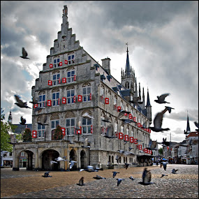 Town Hall by Bram de Mooij - City,  Street & Park  Historic Districts ( pigeons, town hall, gouda )