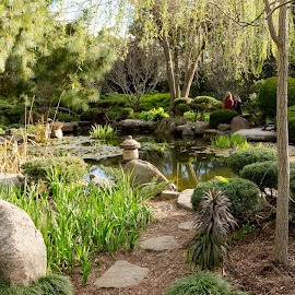 Japanese Garden by Bob Stanford - City,  Street & Park  City Parks