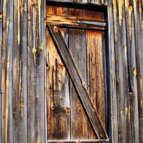Rusty Door by Theodore Schlosser - Buildings & Architecture Other Exteriors ( cabin, barn, wood, door, lines, grey, rust, closeup, quality, detail, new, fresh, win, 2013, 2014 )