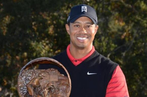 Chok: Tiger Woods stopper karrieren! tiger woods, golf