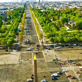 From Concorde to Etoile by Radu Eftimie - City,  Street & Park  Vistas ( paris, airial view )
