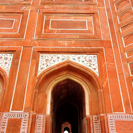AGRA FORT by SANGEETA MENA  - Buildings & Architecture Other Exteriors