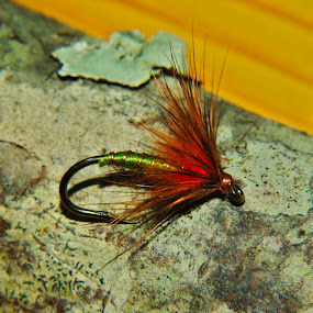 Soft-hackle Fly by Kirk Barnes - Artistic Objects Other Objects ( orange, green, fishing fly, feather and fur, 3906b size 10 )