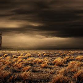 ALONE by Bruce Cordeiro - Illustration Flowers & Nature ( old, desert, house, alone, misty )