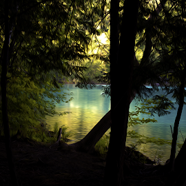 Lake 100 by Kevin Lucas - Digital Art Places ( dreaming, trees, forest, lake, kevin lucas, eye statements, surreal,  )