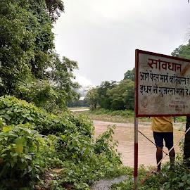 Hidden secret of Jim Corbett by Kunal Khandeparkar - Nature Up Close Other Natural Objects ( signs, nature, hidden, peace, beauty )