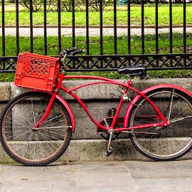 Nowhere Rider by David Walters - City,  Street & Park  Street Scenes ( new orleans, bike, lumix fz200, french quarter, street scene )