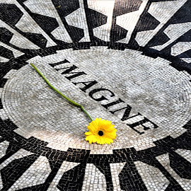 Strawberry Fields Central Park by Lorna Littrell - City,  Street & Park  City Parks ( strawberry fields, remember, imagine, john lennon )