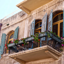 SFAT, ISRAEL by Jody Frankel - Buildings & Architecture Architectural Detail ( sfat, window, israel, flowers, shutters, flower boxes, balcony )