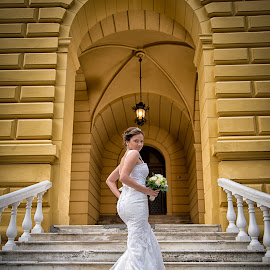 bride and stairs by Jovan Barajevac - Wedding Bride ( sremski karlovci, stairs, session, wedding, dress, magic moments, white, bride )