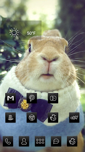 Obesity rounded bunnies theme - screenshot