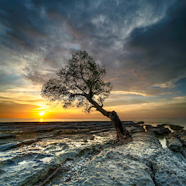 one little thing  by Rocky Jaya - Landscapes Sunsets & Sunrises