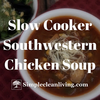 Southwestern Chicken Soup Beef Broth Recipes