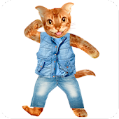 APK App Funny Talking Cat for BB, BlackBerry