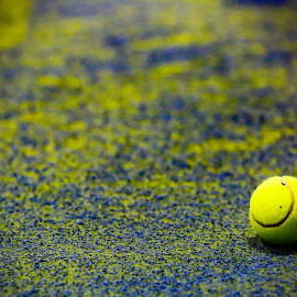 Ball by Christoph Reiter - Sports & Fitness Tennis ( ball, sport, tennis )