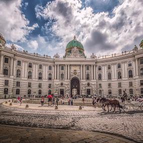 Hofburg by Ole Steffensen - Buildings & Architecture Public & Historical ( wien, hofburg, vienna, carriage, architecture, michaelerplatz, austria )